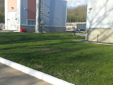 Газон и озеленение Джубгинской ТЭС