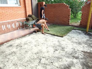 Проводим работы по озеленению