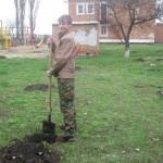 озеленение детского дома