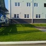 промышленное озеленение