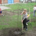 ландшафтное озеленение в ростовской области